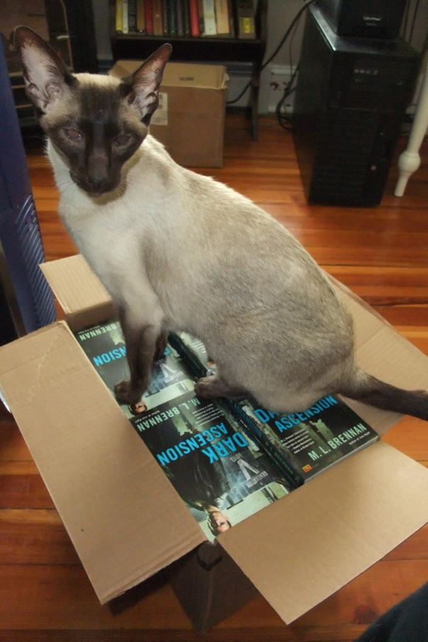 You'd like these books, wouldn't you? But my fluffy kitty butt shall guard them until release day. NONE SHALL PASS.